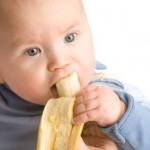 membuat makanan bayi - momymilk