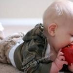 makanan bayi apel - momymilk